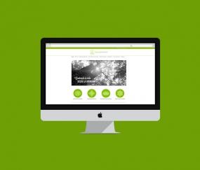 diseño web vibración positiva