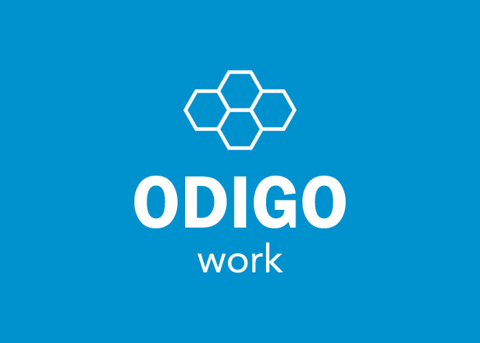 Logo design for online storage